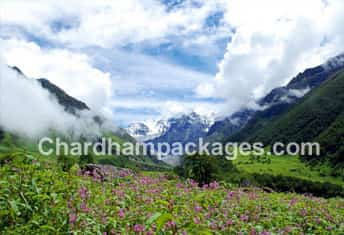 Char Dham with Valley of Flower 2018